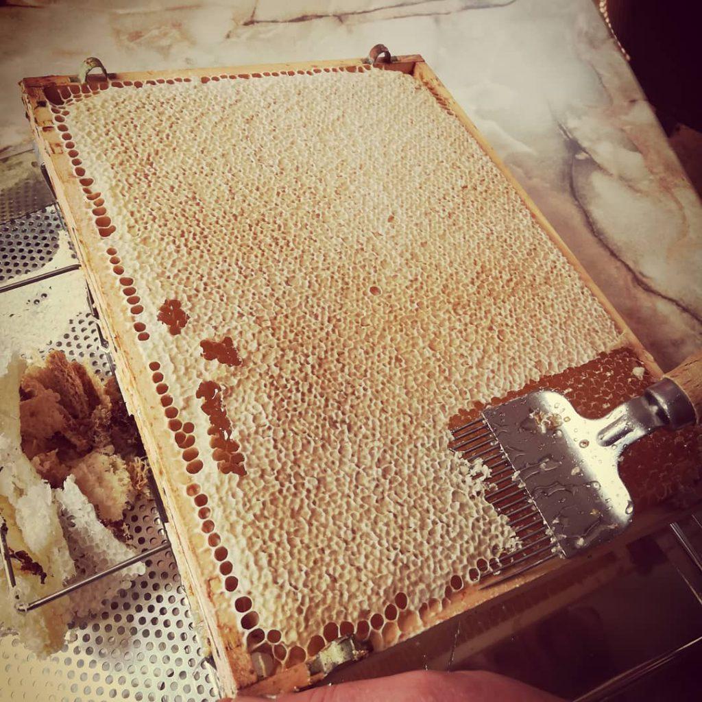 Entdeckeln der Honigwaben